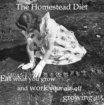 11943 Wartime Garden Life Magazine copy