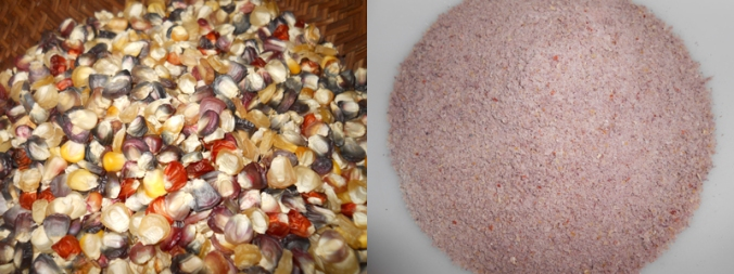 incan rainbow corn before and after grinding