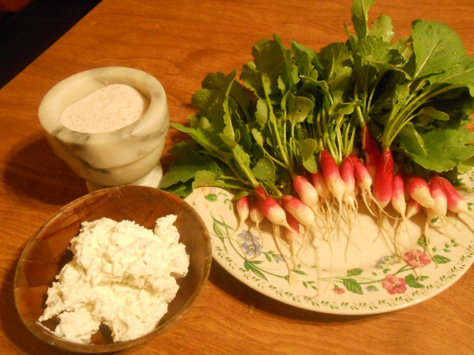 """My new fav snack: homegrown """"french breakfast' radishes with homemade herbed goat cheese and salt"""
